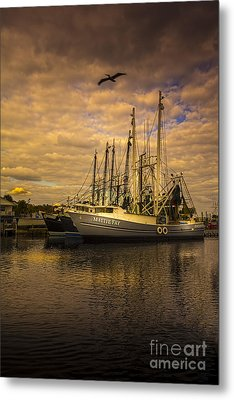 Pelican Over Mattie Fay Metal Print by Marvin Spates