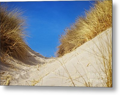 Perfect Day Metal Print by Angela Doelling AD DESIGN Photo and PhotoArt