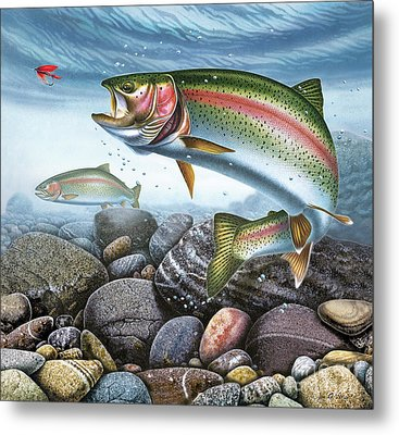 Perfect Drift Rainbow Trout Metal Print by JQ Licensing