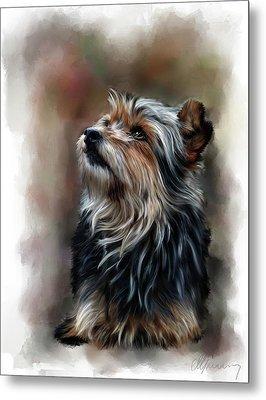Pet Dog Portrait Metal Print by Michael Greenaway