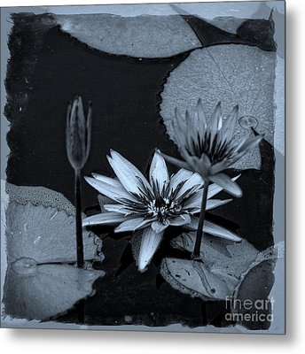 Petals Floating On Water Bw Metal Print by Ella Kaye Dickey