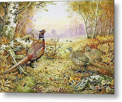 Pheasants In Woodland Metal Print by Carl Donner