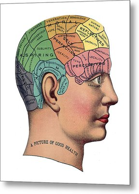 Phrenological Chart Metal Print by American School