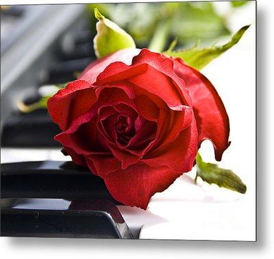 Piano Rose Metal Print by Sophie De Roumanie