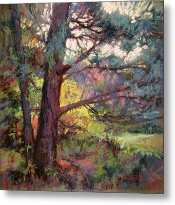 Pine Tree Dance Metal Print by Donna Shortt
