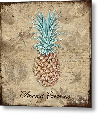 Pineapple, Ananas Comosus Vintage Botanicals Collection Metal Print by Tina Lavoie