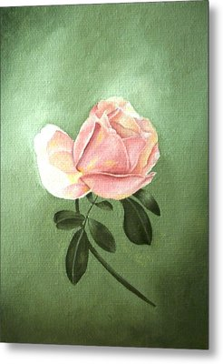 Pink Peach 1 Rose Painting Flower Painting Art Print Metal Print by Sally Holt