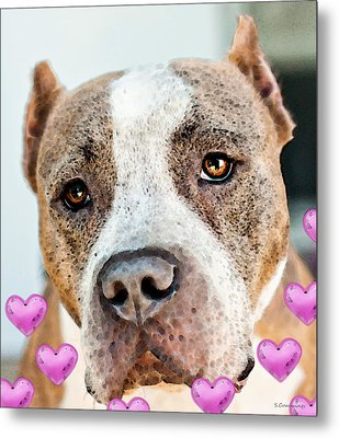 Pit Bull Dog - Pure Love Metal Print by Sharon Cummings