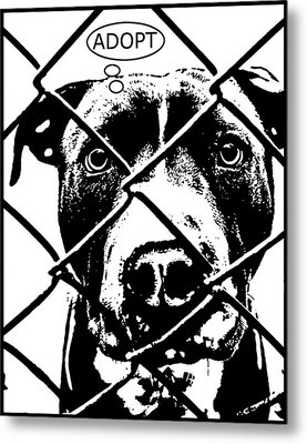 Pitbull Thinks Adopt Metal Print by Dean Russo