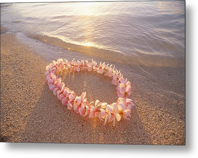 Plumeria Lei Shoreline Metal Print by Mary Van de Ven - Printscapes