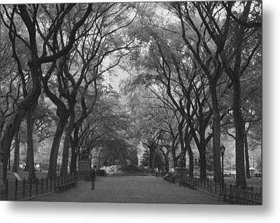 Poets Walk In Central Park Metal Print by Christopher Kirby