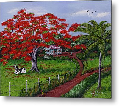 Poinciana Blvd Metal Print by Luis F Rodriguez