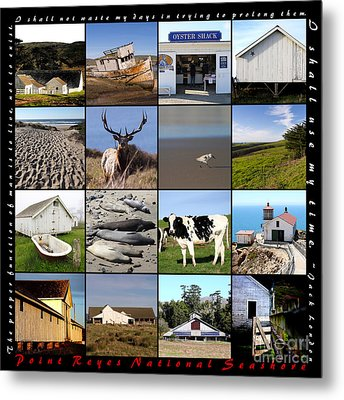 Point Reyes National Seashore 20150102 With Text Metal Print by Home Decor