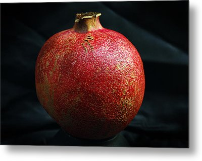 Pomegranate Metal Print by Terence Davis