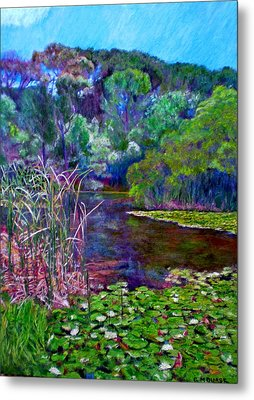 Pond Of Tranquility Metal Print by Michael Durst