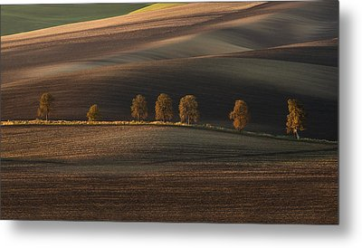Postcards From Moravia Metal Print by Jaroslaw Blaminsky