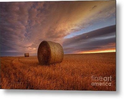 Prairie Harvest Metal Print by Dan Jurak
