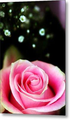 Pretty In Pink Metal Print by Mandy Wiltse