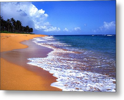 Puerto Rico Shoreline Along Pinones Metal Print by Thomas R Fletcher