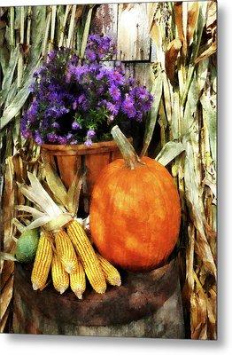 Pumpkin Corn And Asters Metal Print by Susan Savad