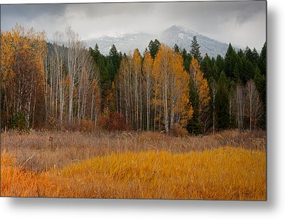 Purcell Gold Metal Print by Idaho Scenic Images Linda Lantzy