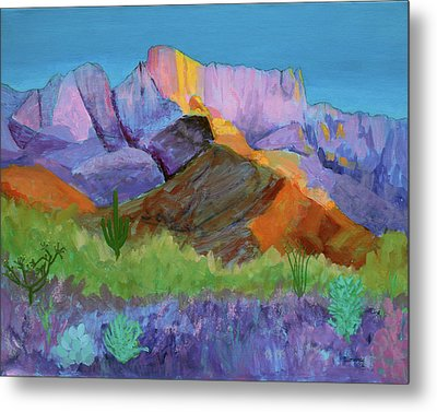 Purple Catalina Metal Print by Mordecai Colodner