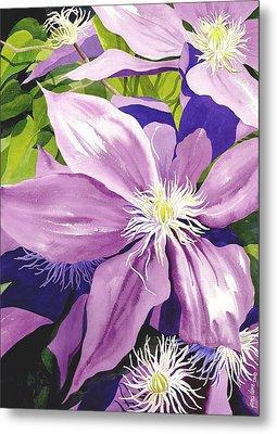 Purple Clematis In Sunlight Metal Print by Janis Grau