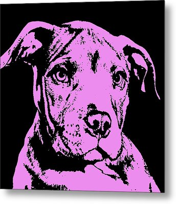 Purple Little Pittie Metal Print by Dean Russo