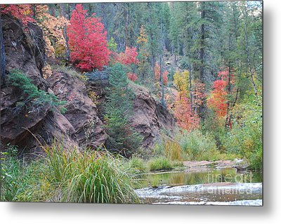 Rainbow Of The Season With River Metal Print by Heather Kirk