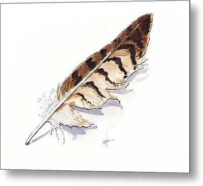 Raptor Feather Metal Print by Christine Camp