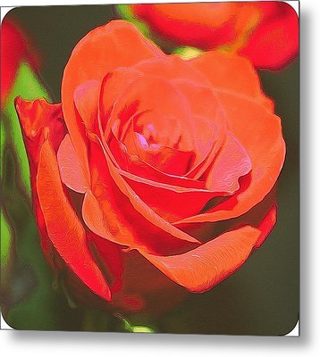 Red And Orange Metal Print by Cathie Tyler