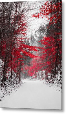 Red Blossoms  Metal Print by Parker Cunningham