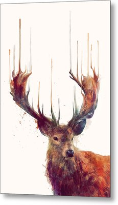 Red Deer Metal Print by Amy Hamilton