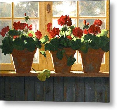 Red Geraniums Basking Metal Print by Linda Jacobus