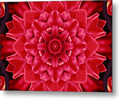 Red Rose Kaleidoscope Metal Print by Cathie Tyler