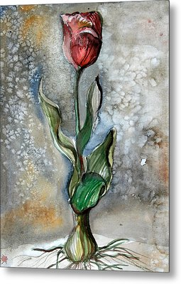 Red Tulip Metal Print by Mindy Newman