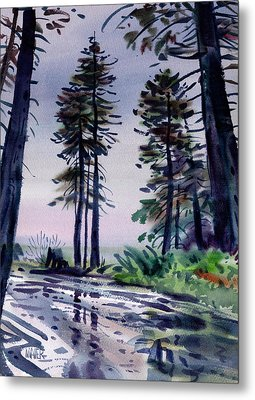 Redwood Reflections   Metal Print by Donald Maier