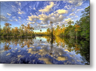 Reflecting On Florida Wetlands Metal Print by JC Findley
