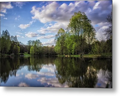 Reflection Metal Print by Martin Newman