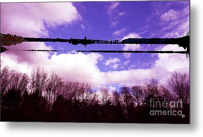 Reflection - Saugerties Preserve Metal Print by Tom Romeo