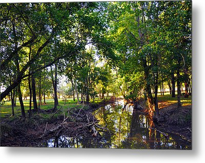 Reflections Metal Print by Brittany H