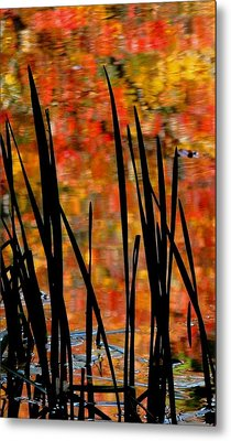 Reflections On Infinity Metal Print by Angela Davies