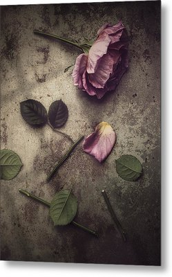Remnants Metal Print by Amy Weiss