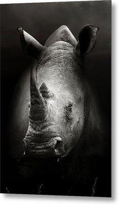 Rhinoceros Portrait Metal Print by Johan Swanepoel