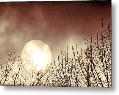 Rising Sun Moody Sky Metal Print by Terry DeLuco