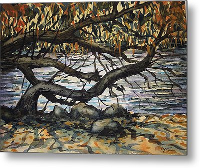 River Willow 2 Metal Print by Lynne Haines