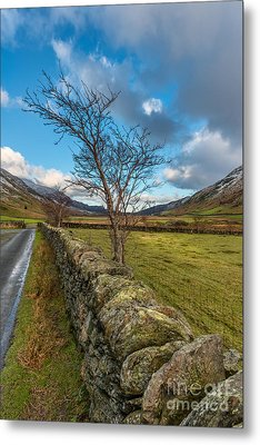Road Less Travelled Metal Print by Adrian Evans