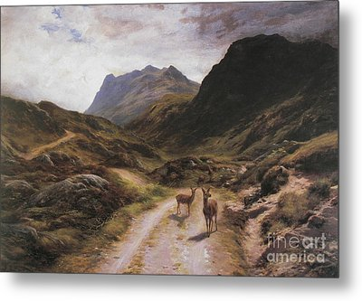 Road To Loch Maree Metal Print by Celestial Images