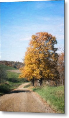Roadside Tree In Autumn Metal Print by Tom Mc Nemar