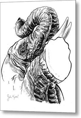 Roaring Elephant Metal Print by John Keaton